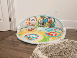 Skip Hop Explore and More Amazing Arch Activity Mat