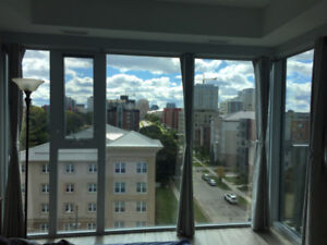 1 Bedroom Apartment at The Hub, Spring (May-Aug.) Sublet
