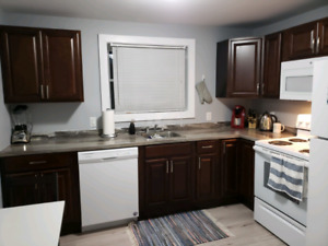 1 Bedroom Apartment Near Quinpool in West End Halifax