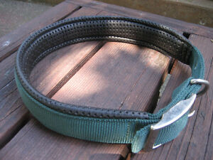 Dog Collar/Food Container