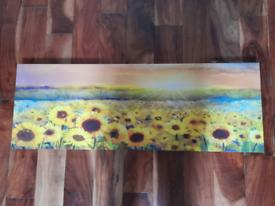 Sunflower Canvass