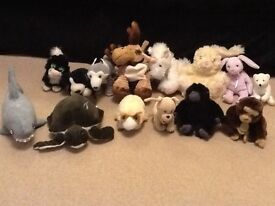 Animal teddies-turtle,shark,chimpanzee,rabbit,wolf and more (VGC)
