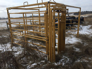 Maternity pen for cattle