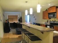 2 bedroom 2 bath Condo in Airdrie