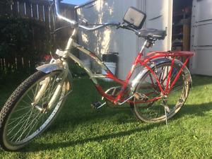 Schwinn cruising bike