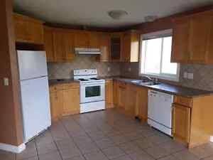 house for rent (olds)