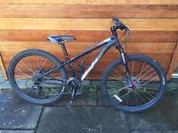 Specialized Mountain Bike (XS)