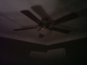 Ceiling Fan with Light Peterborough Peterborough Area image 1