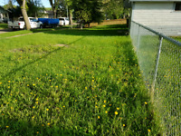 To have a yard with a lot of weeds is very sad