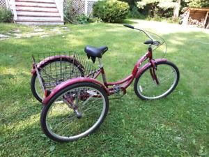 Schwinn adult tricycle