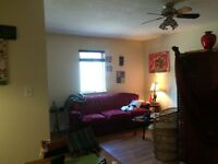 Downtown roommate needed 2 bedroom to share