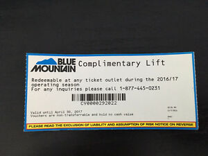 Blue Mountain All Day Lift Ticket - Any Day