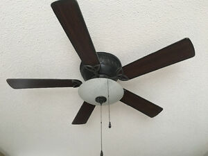 Large Ceiling Fan in Great Working Condition