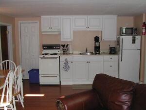 Modern & All Inclusive 1 BR Basement Sep 1 or earlier