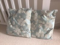 Two duck egg cushions