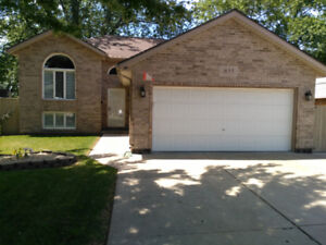 Raised ranch 3+1 bed 2 bath with walkout South Windsor