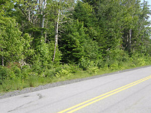 Ocean Access, Approved building lots on Ostrea Lake Road