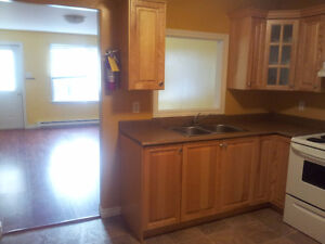 2 BD RM ABOVE GROUND APT Grand Falls Windsor Avail June1
