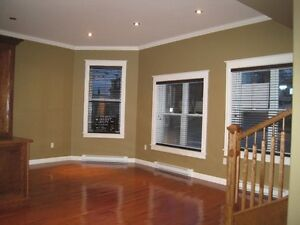 Beautiful downtown apartment  with PARKING ! St. John's Newfoundland image 7