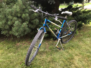 Raleigh 18 Speed Bike - Discovery
