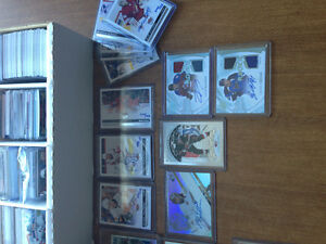 Sports card collection ton of rookie cards