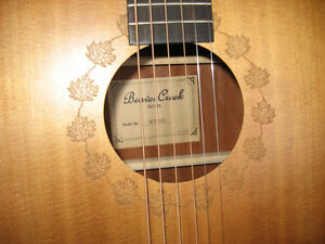 Beaver Creek acoustic + case, 160$