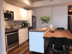 Executive 2br rental, furnished condo downtown