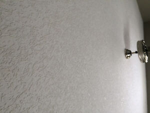 TEXTURE CEILINGS $1.0/sf; Builders and contractors discount avai