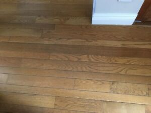 Hardwood Flooring - Reclaim It!