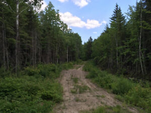 10 acres en pleine nature.
