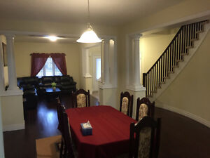 All inclusive 2 Large Bedrooms w/ Washroom Fully Furnished!