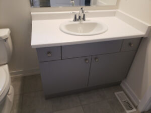 44 INCH BATHROOM VANITY PACKAGE