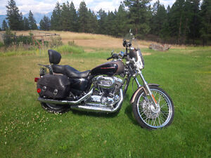 Sportster 1200C Like New condition