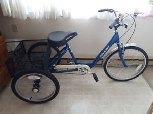 Raleigh Adult Tricycle - 3 speed