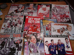 Detroit Red Wing Pics