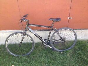 16 EVO River Sport Black bike L