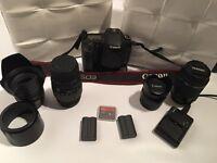 Canon 30D camera body plus lenses