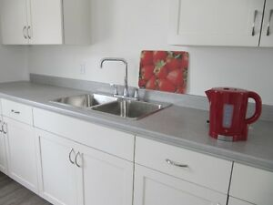 2 BR Downtown, heated