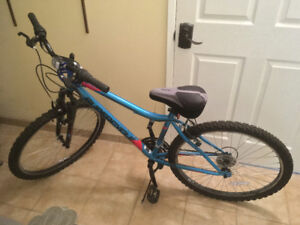 Supercycle Mountain Bike (with pump & lock included) - $100
