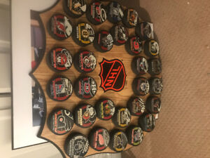 Hockey plaque with all NHLteam pucks