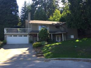 Very well maintained 4-bedroom house in Central Coquitlam