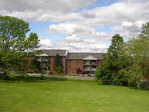 1 & 2 Bedroom Sackville for February heat and hotwater incl