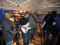 lead guitar vocals bass guitar pedal steel player available
