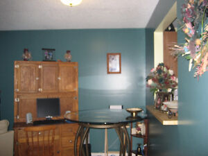 One bedroom furnished condo for rent in Tumbler Ridge BC Prince George British Columbia image 1