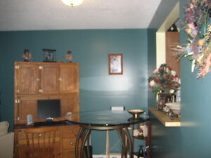 One bedroom furnished condo for rent in Tumbler Ridge BC