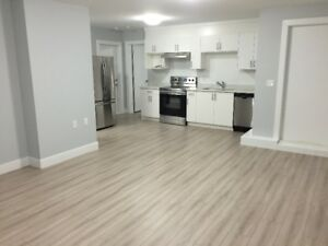 BRAND NEW Legal Basement Suite - Langley (Willoughby)