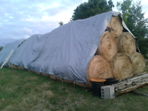 Quality Dry Hay-FOR SALE!