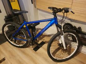 Carrera mountian bike *Fully Working*