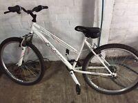 Women's Falcon Orchid Mountain Bike