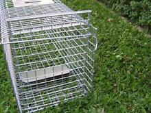 TRAP Humane possum cat fox rabbit bird animal cage live Somersby Gosford Area Preview